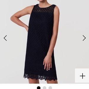 Loft Shift Lace Navy Dress